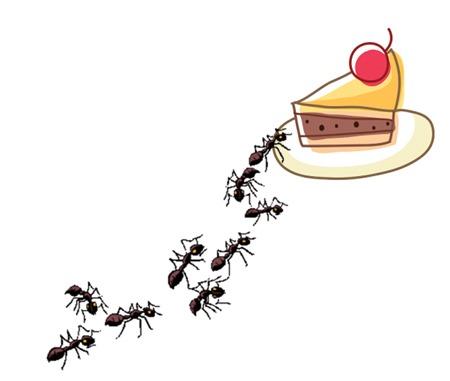 「すまいの便利屋さん」快適生活のアイデア6:食べ物へのアリの侵入を防ぐには?