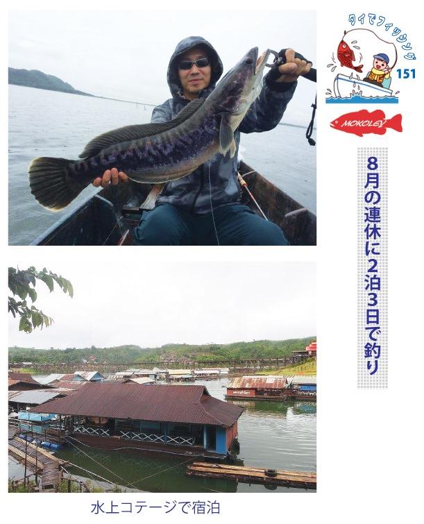 8月の連休に2泊3日で釣り、釣り具販売と釣りツアーでおなじみの「Mokoley(モコリー)」