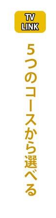 タイで日本のテレビを見るなら「TV LINK」、5つのコースから選べる