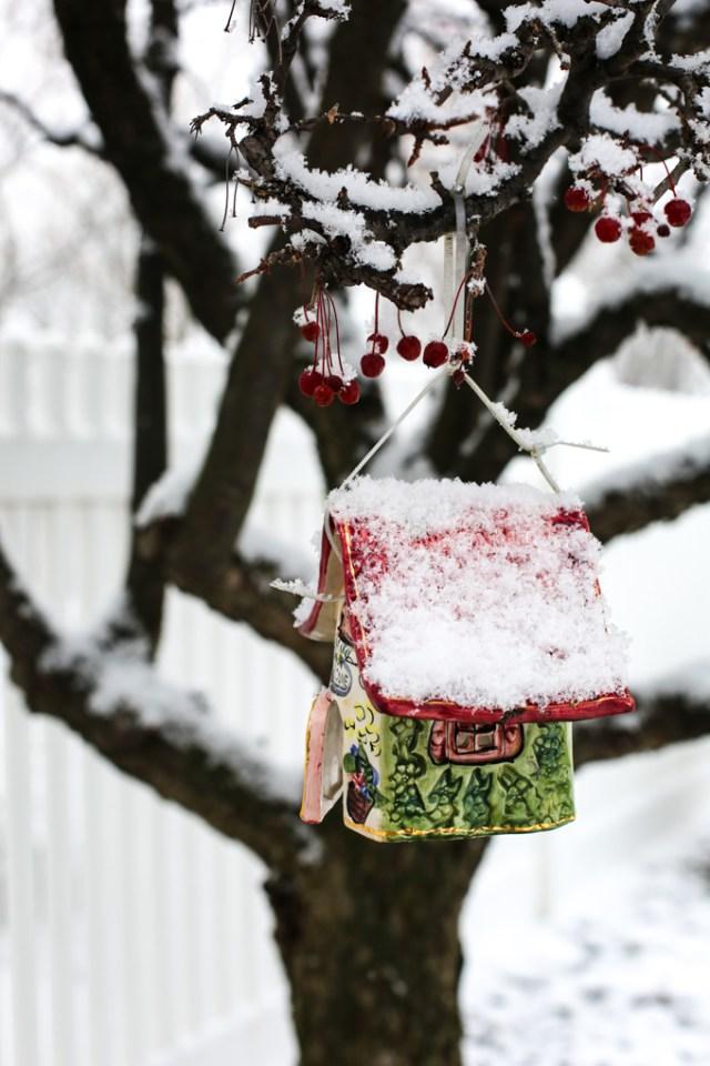 snow-berry-4