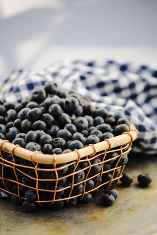 blueberry-basket-4