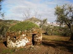 Buhardas y cabañas
