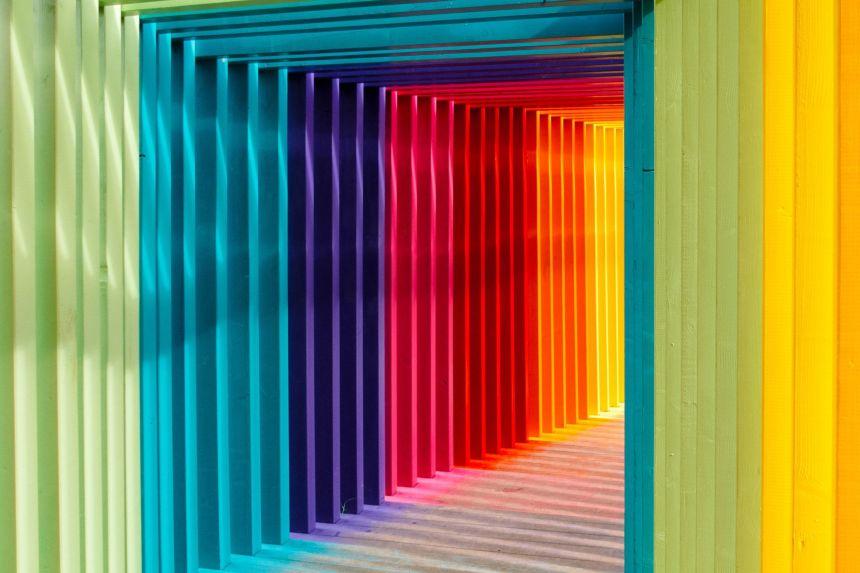 Educación de colores