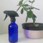 DIY Housebug Repellent