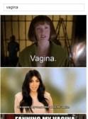 vagina en facebook02
