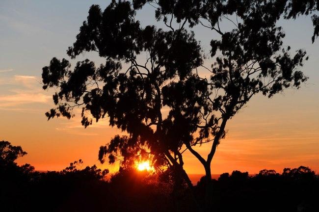 018 35-sunset