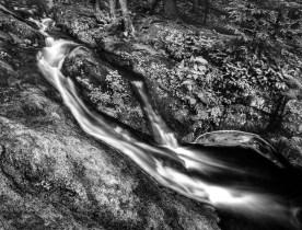 Tillmn Ravine — Stokes State Forest, NJ © jj raia