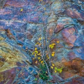 Rock Wall Detail — Blue Ridge Parkway, NC © jj raia