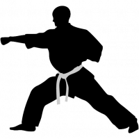 acmosoft-karate-punch-icon