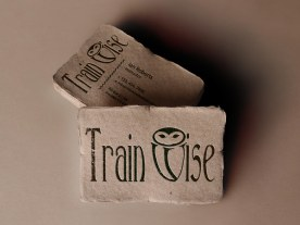 Trainwise - Recycled Card Design
