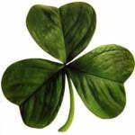 St Pats Irish_clover