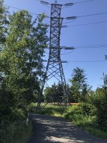This is why they call it the Power Line Trail