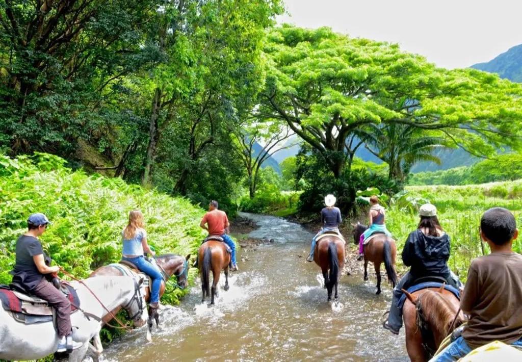 Horseback tour in Hawaii