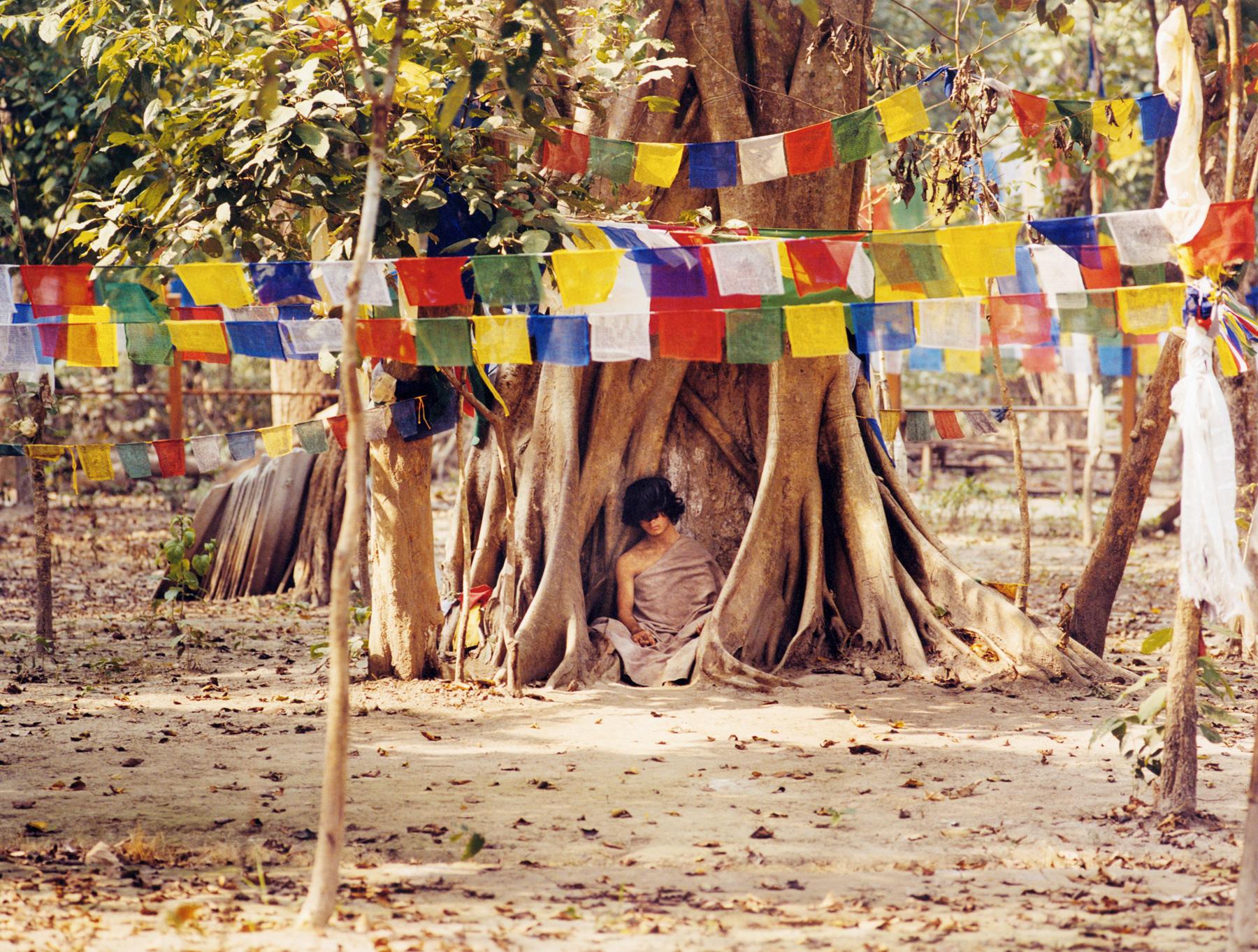 boy meditating under tree