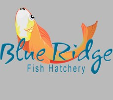 An illustration accomplished with the use of Photoshop to establish a logo for a Fish Hatchery.