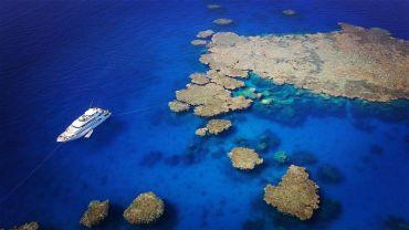 JLM Travel - Croisière-plongée en Mer Rouge