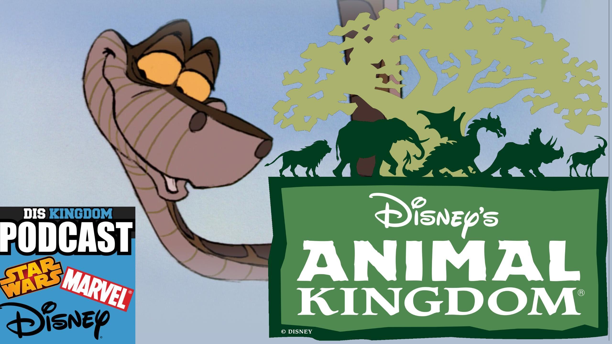 Animal Kingdom Clipart Animal World
