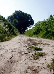 Over de paden in Zuid-Limburg.