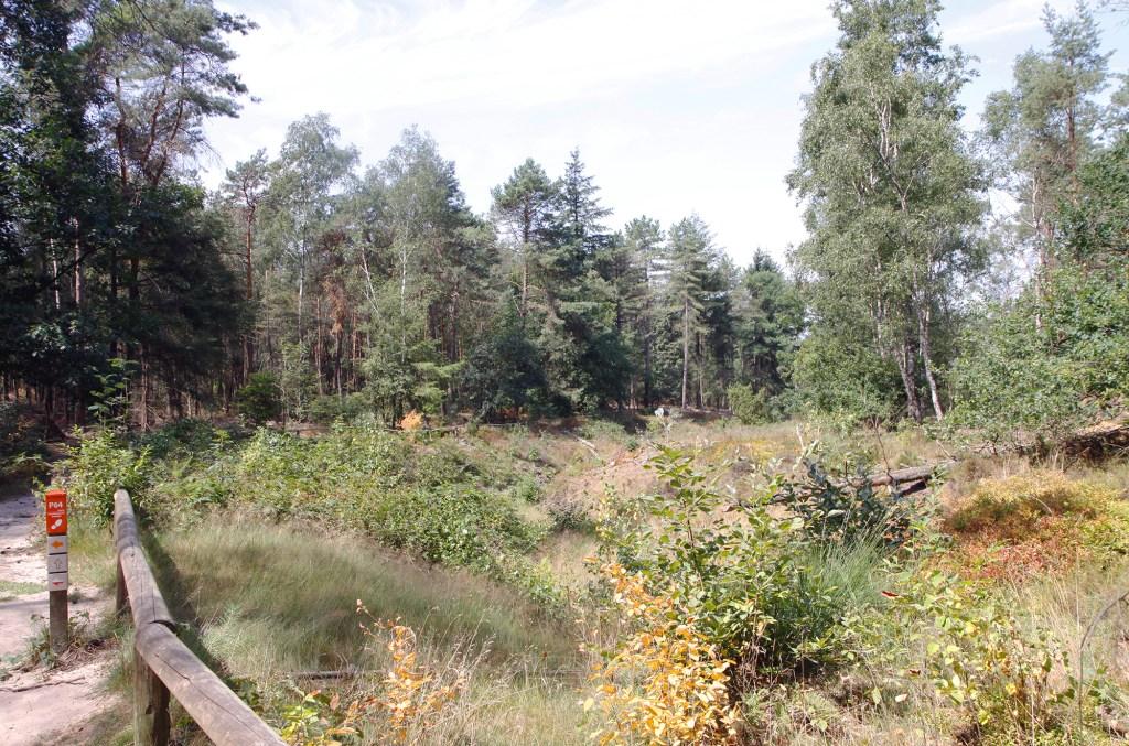 De paden bij de Lemelerberg