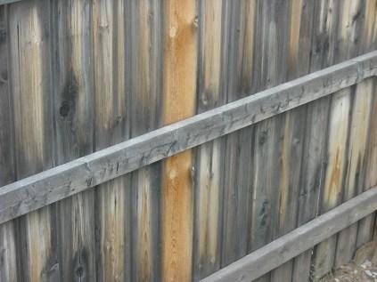 my fence (c) JLPhillips 2013