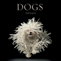 Dogs - Time Flach