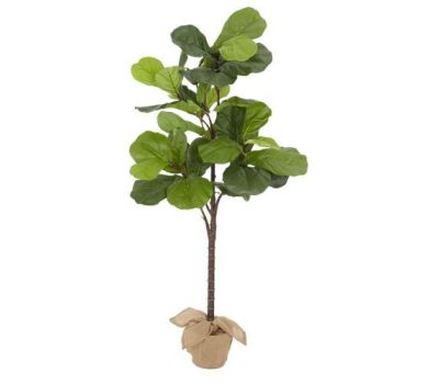 Pottery Barn Fiddle Leaf Fig