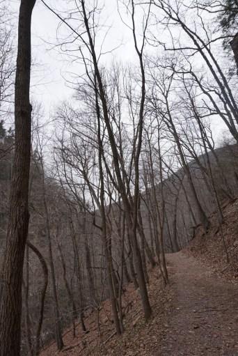 Cascades Hike 01