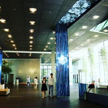 Exhibition at Art Center Nabi, Seoul. João Martinho Moura (2019)