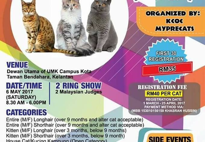KB KELANTAN FUN CAT SHOW 2.0 (6/5/2017) – part 1