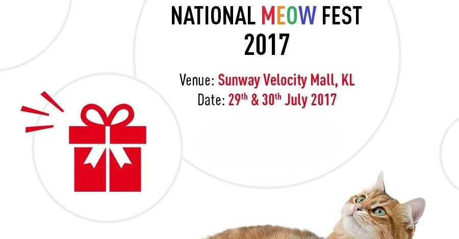 ✔ ROYAL CANIN NATIONAL MEOW FEST 2017 – PART 2