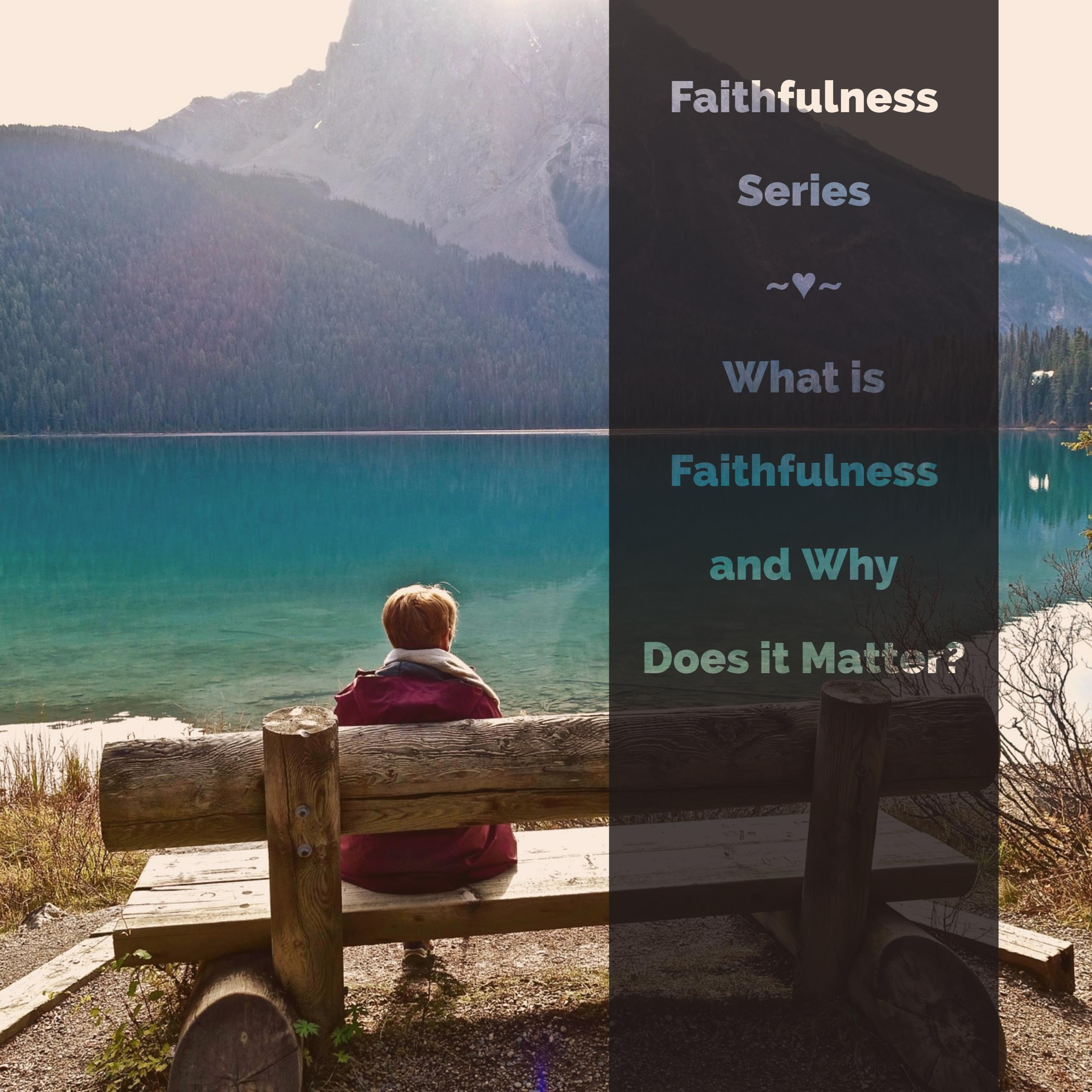 What is Faithfulness and Why Does it Matter?