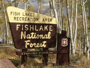 National Forest sign at about mile marker 6