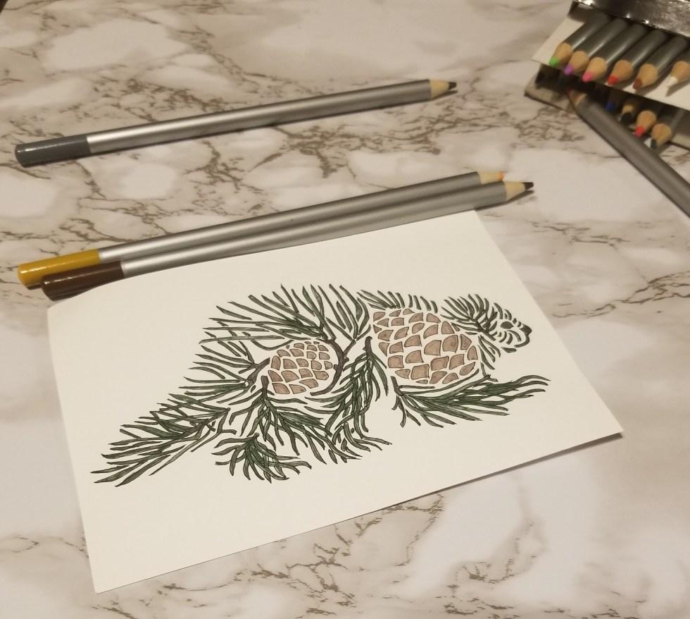 Colored porcupine