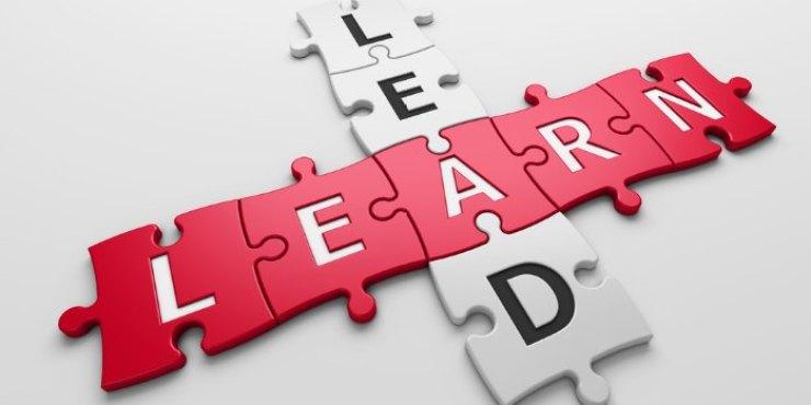 Middle Leaders Mentorship Programme