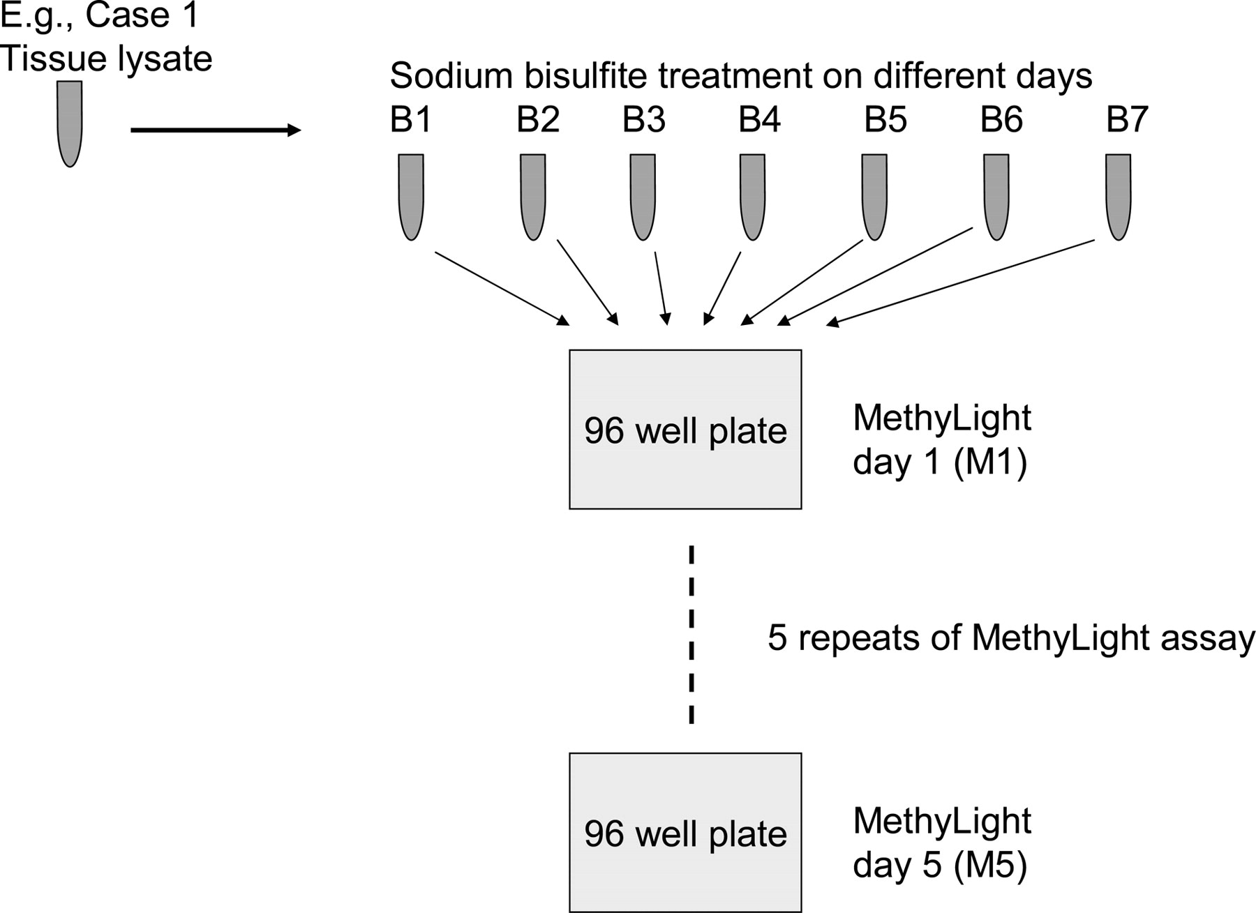 Precision And Performance Characteristics Of Bisulfite Conversion And Real Time Pcr Methylight