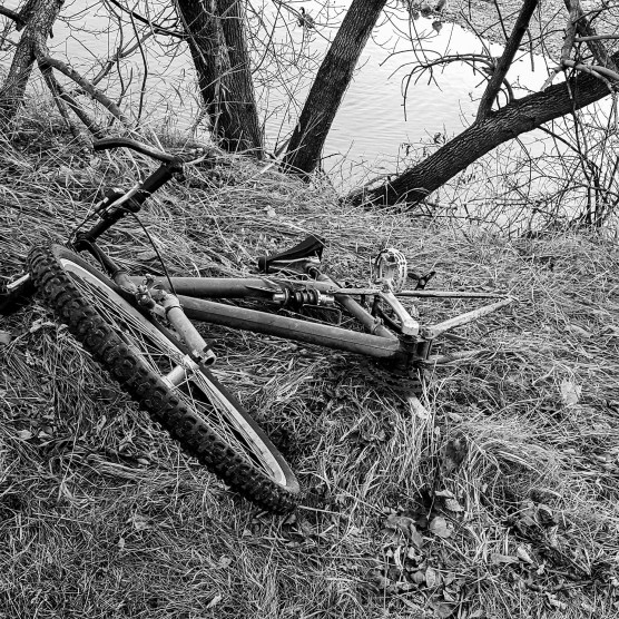 out of place, broken bike in nature