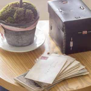 Mail and plant sitting on small table