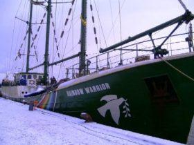 A bordo del M/S Raibow Warrior parece que todo está tranquilo, pero en la bodega del barco hay una actividad frenética. (Foto: MM - ©JMNoticias)