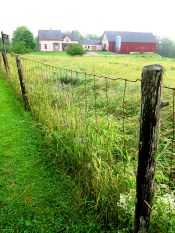 A farm for sale -- for about $500,000