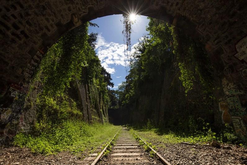 Vue de la tranchée du Parc Montsouris depuis la sortie du tunnel de Montouris. Copyright Jean-Nicolas Lehec - Tous droits réservés