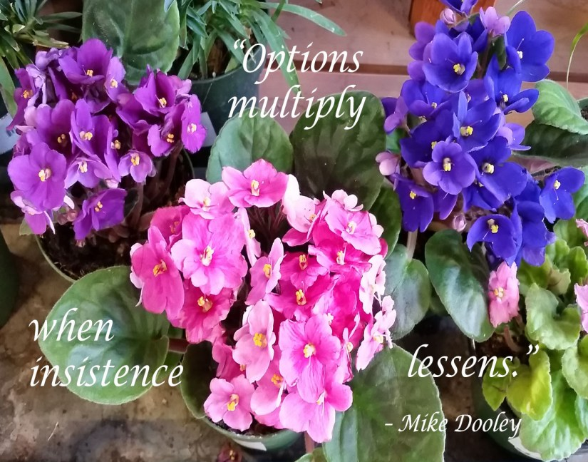 """Options multiply when insistence lessens."""