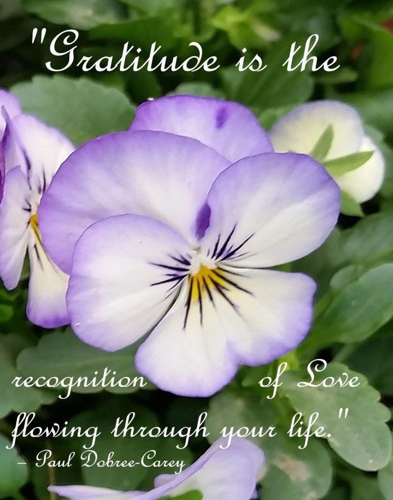 """""""Gratitude is the recognition of Love flowing through your life."""""""