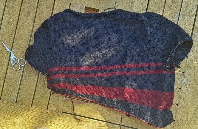 stripes-gone-crazy-back