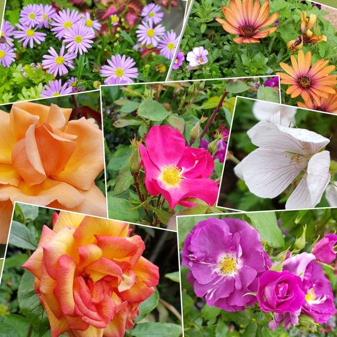 flower-mosaic
