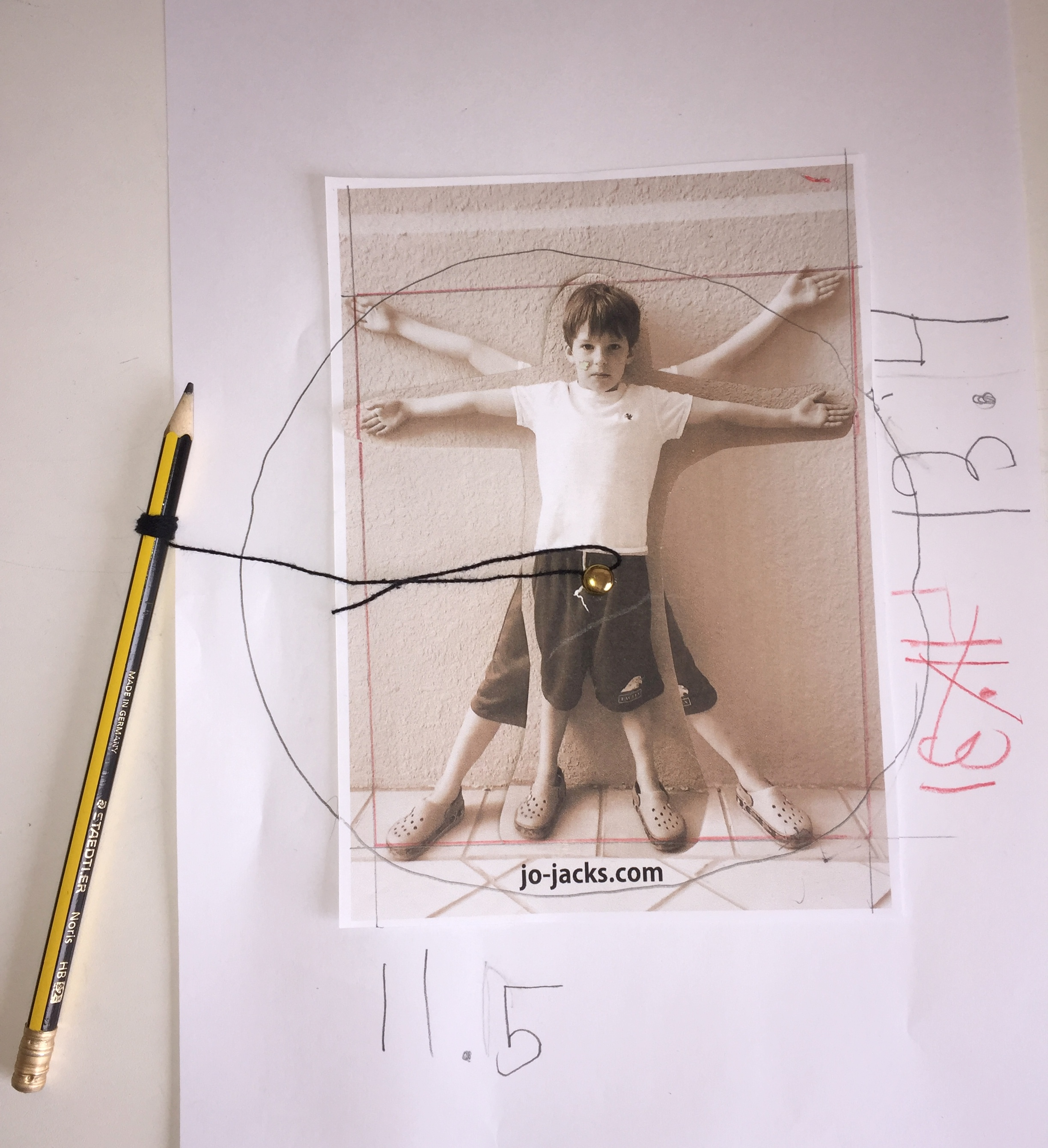 Vitruvian Man Activity