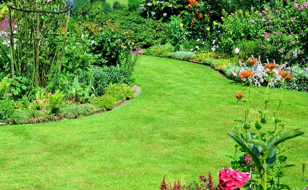 Jo votre jardinier paysagiste à Chevillon, Charny Orée de Puisaye, Yonne (89) | www.jo-votre-jardinier-paysagiste.fr