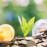 All financial institutions must disclose sustainability risks and impacts, MEPs agreed