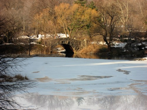 Photo of melting ice on lagoon in Central Park taken by Joana Miranda