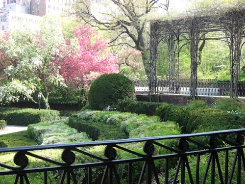 Photo of groomed hedges and trellis at Conservatory Garden, taken by Joana Miranda