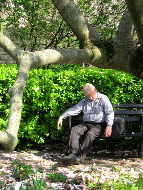 Photo of sleeping man at Conservatory Garden in Manhattan, taken by Joana Miranda